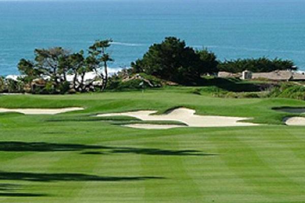 Tappeti erbosi e campi da golf